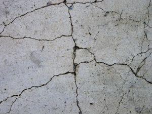Ce au in comun pardoseala de beton si berea1