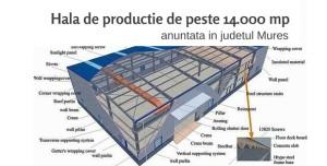 Proiect Mures infopardoseli
