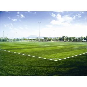 Teren de fotbal - infopardoseli