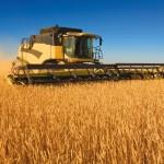 proiect unitate depozitare cereale - Galati
