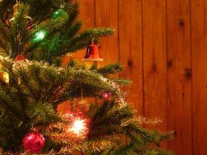Cum sa va protejati pardoselile de lemn de ravagiile iernii si pe sezonul Craciunului1