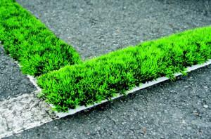 Poate fi folosita iarba ca si material de constructie2